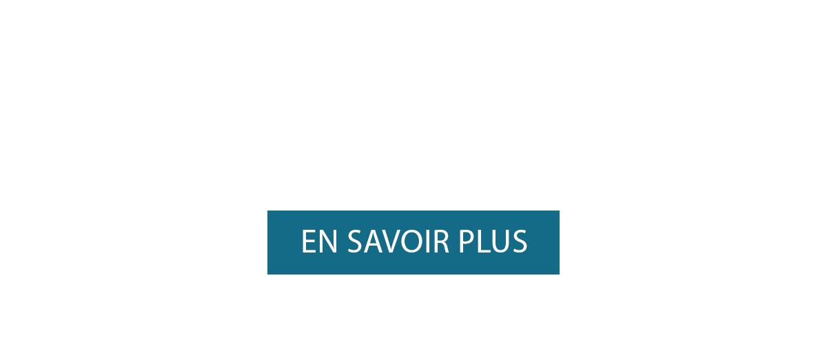 bandeau-cliquable-site2016-vivingbis.png