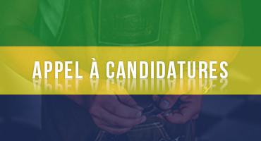 Compagnonnage artisanal au Gabon