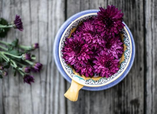 fete conscrit bouquet composition florale fleur fleuriste stage formation