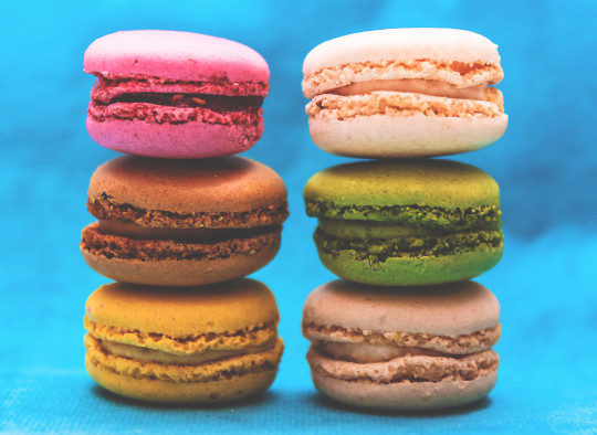 macaron petit four patisserie stage formation