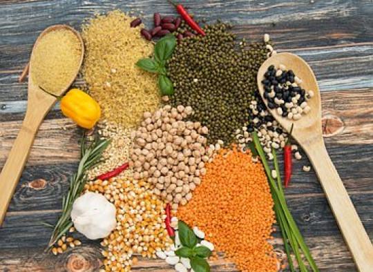 Légumineuses et protéines végétales
